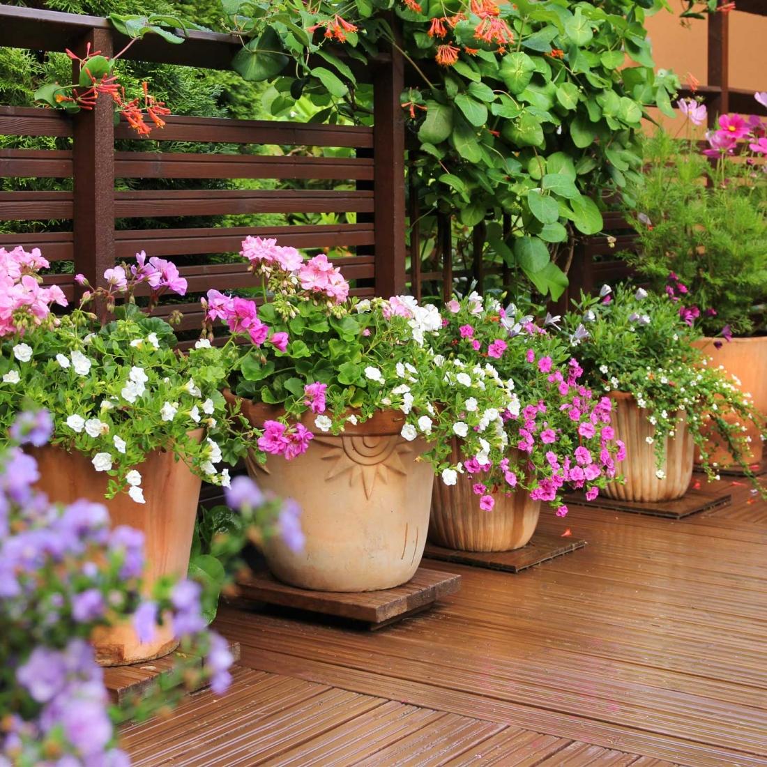 Composizione Vasi Da Balcone vasi da interni, esterni e da giardino