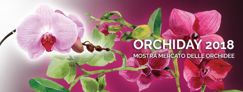 Speciale Orchiday 2018