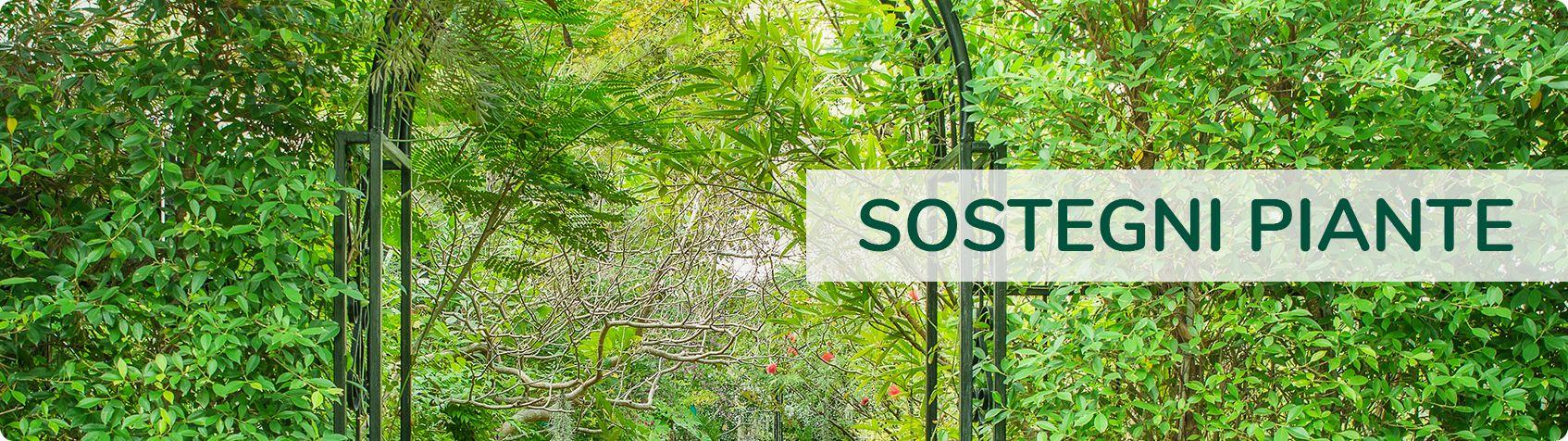 Tutori Per Rose Rampicanti vendita di sostegni per piante