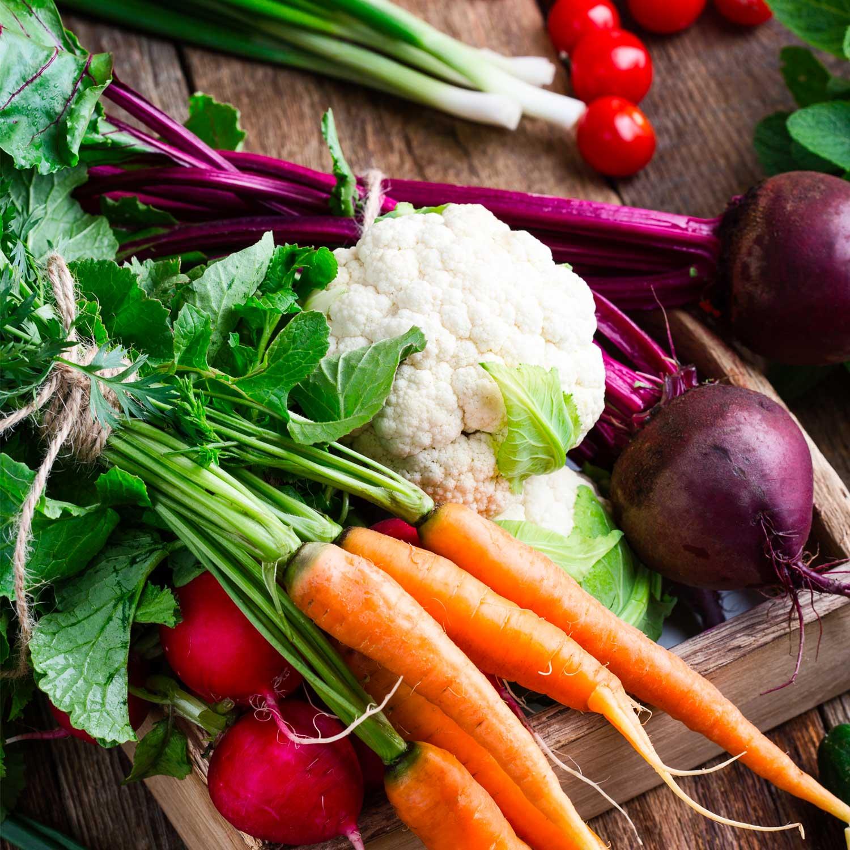 Cosa Piantare A Febbraio fare l'orto, cosa piantare a febbraio